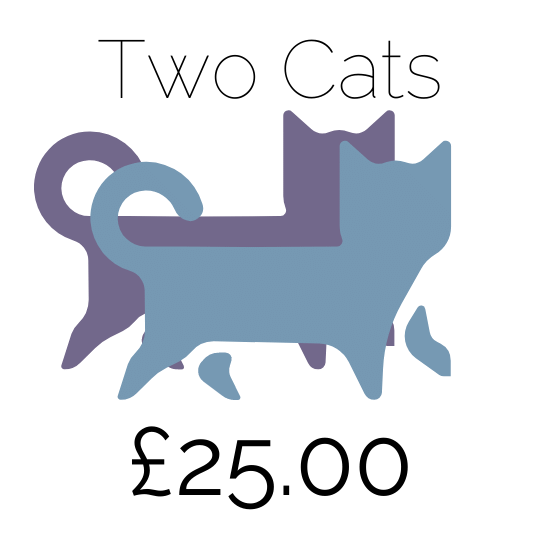Price For 2 Cats At Amberlodge Boarding Cattery