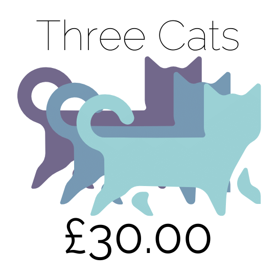 Price For 3 Cats At Amberlodge Boarding cattery