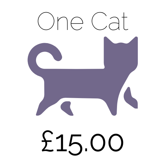 Price for 1 cat at Amberlodge Boarding cattery